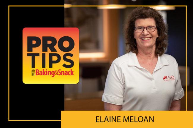 Pro Tips Elaine Meloan