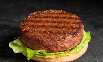 Aak plant burger lead
