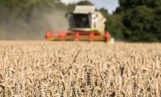 Harvestingwheat lead