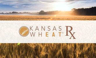 Kansaswheatrx lead