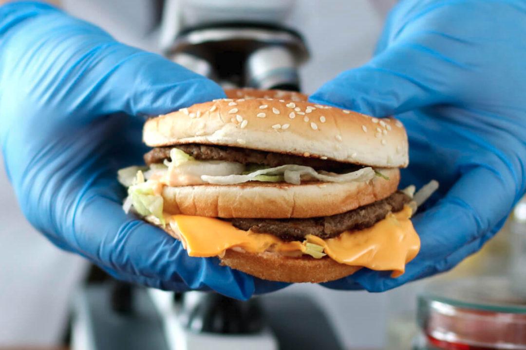 Moolec plant-based burger