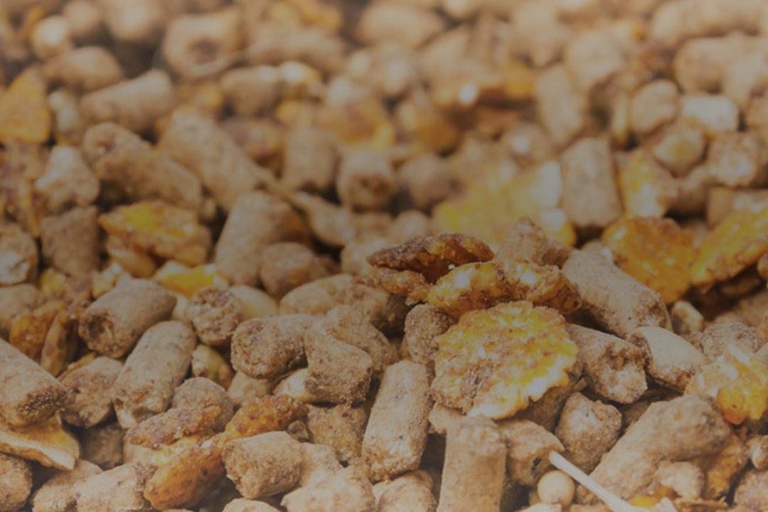 Capstone Commodities feed