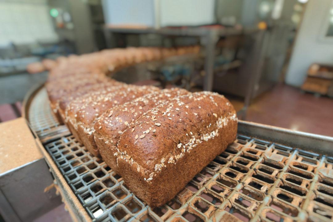 Corbion bread production line