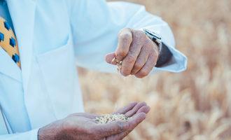 Graininspection lead