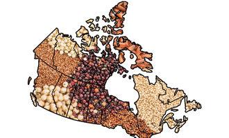 Canadagrains_lead