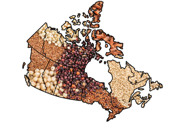 Canada grains