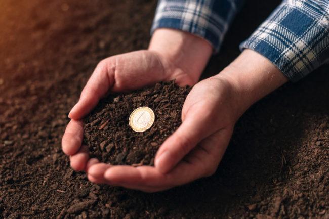 Farmer income