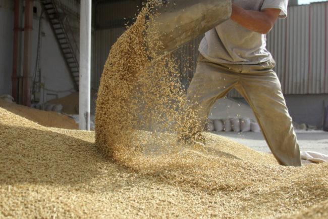 Grain moving