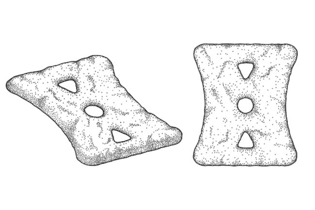 Food Patent