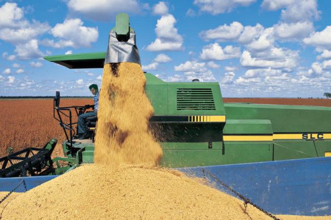 Bunge agribusiness