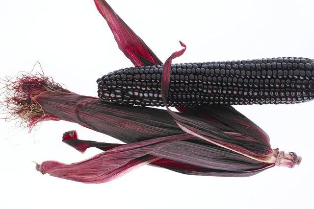 Feat-suntava-purple-corn-192_1030