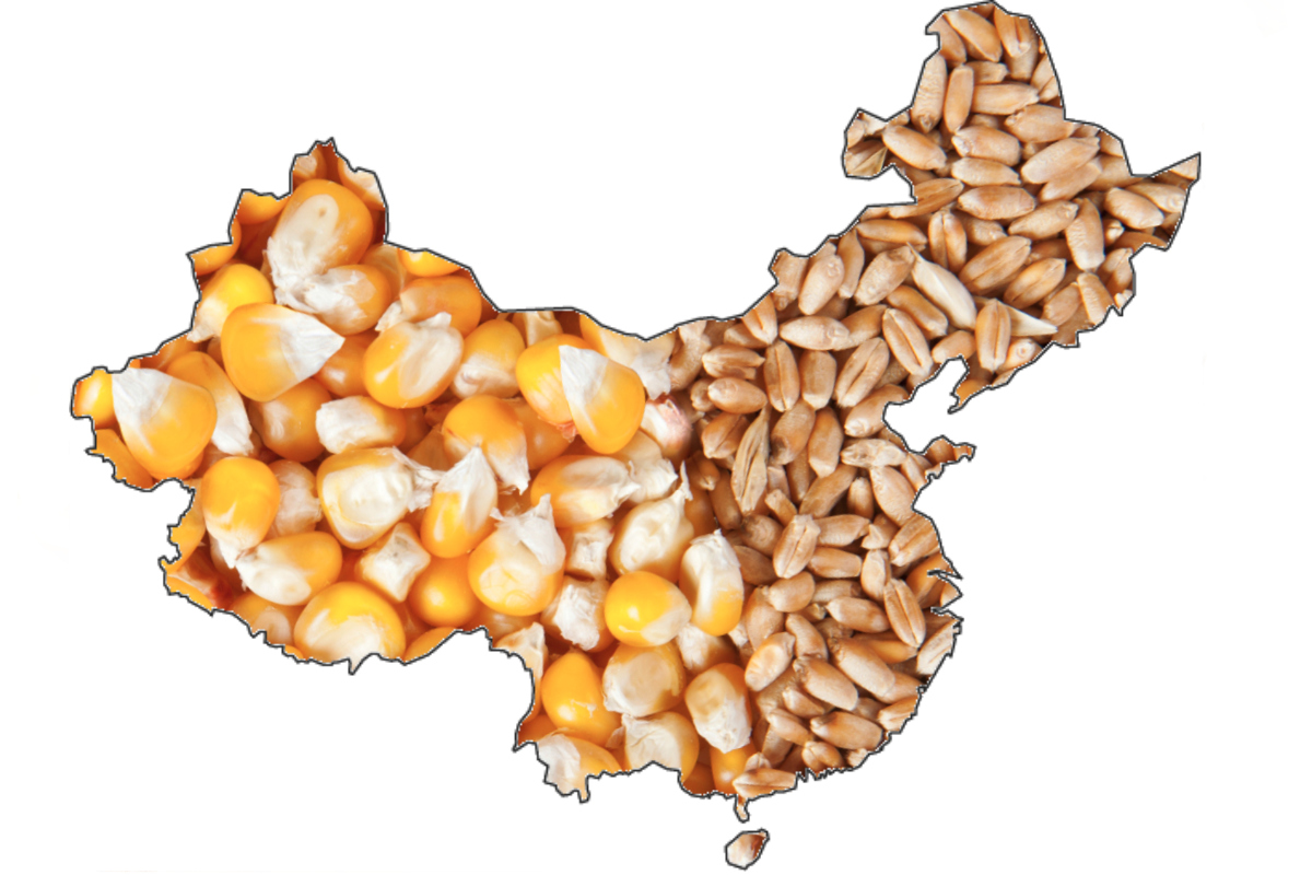 China grain production revisions alter world supply-and-demand
