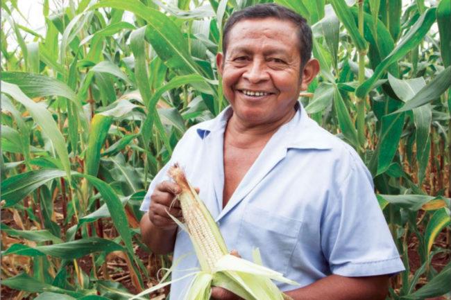 Cargill farmer