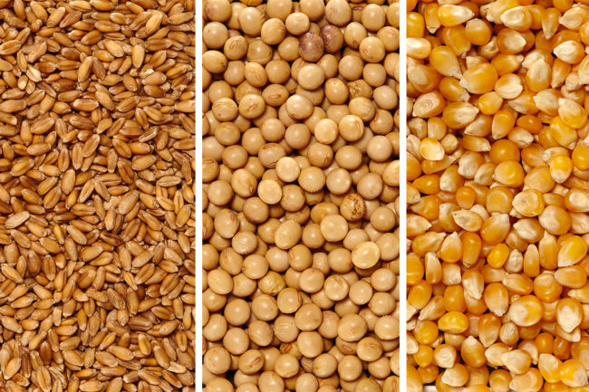 Wheat, soy, corn