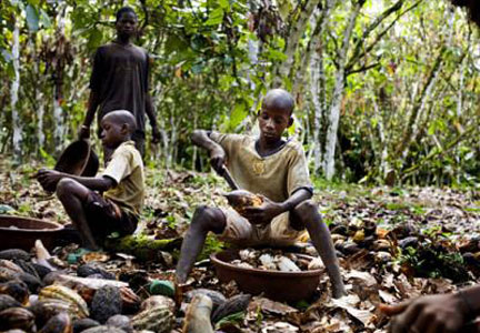 Children working on an Ivory Coast cocoa plantation