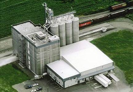 Nisshin expanding capacity in Canada   Bakingbusiness com