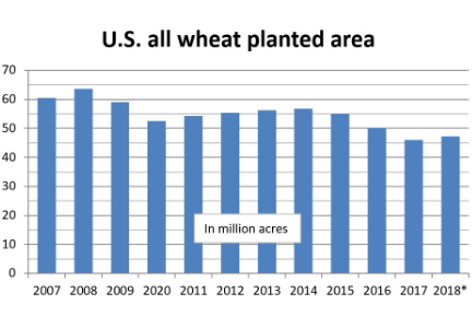 Chart: U.S. all wheat planted area